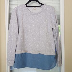 J.Crew Dotted Chambray Sweatshirt